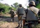 Drogues : Un narcotrafiquant arrêté et 71 kg de kif traité saisis à Naâma