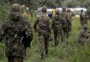 Deux casemates pour groupes terroristes découvertes par l'ANP et détruites à Aïn Defla