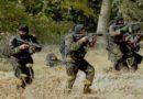 Skikda : Deux terroristes abattus par les forces de l'ANP selon le MDN