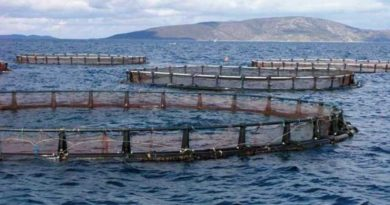 Algérie : Les investissement dans l'aquaculture atteignent les 1,7 milliard de dollars