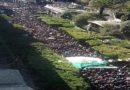 Des centaines de milliers d'Algériens disent NON à un 5e mandat de Bouteflika