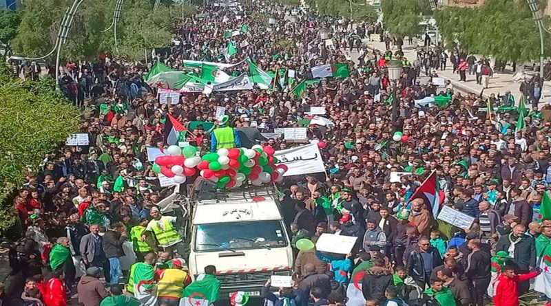 Vidéo : Reportage sur le sacre sacre continental  de l'Algérie à la CAN 2019 en Egypte.