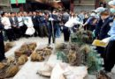 Chine: les marchés de Wuhan rouvrent malgré des appels à la fermeture depuis l'étranger
