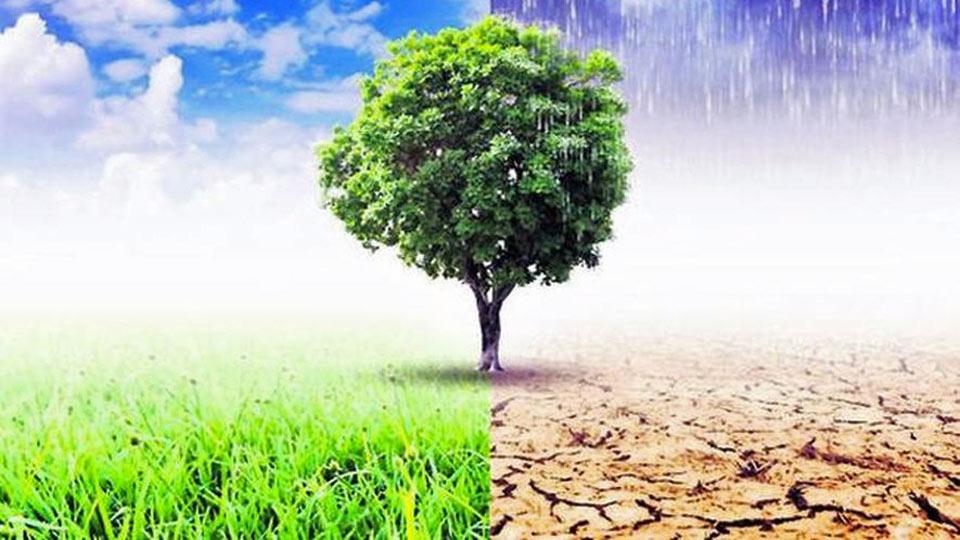 HBSC Londres attaquée par une organisation à cause de ses financement à l'origine du changement climatique.